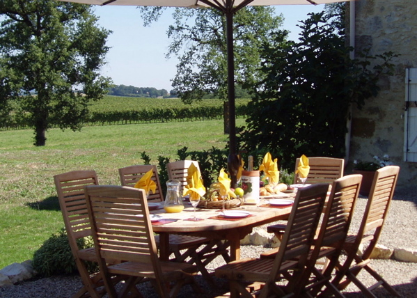 Brunch on the terrace, with vineyards beyond